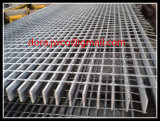 Professionele Grating van China Anping Fabrikant Gegalvaniseerde Raspende Maaswijdte 30X100mm