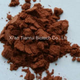 Fructus Rosae Laevigatae ExtractかローザLaevigata Michx Powder