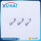 2016 높은 Quality 및 Cheap Price 3X10mm Glass Fuse