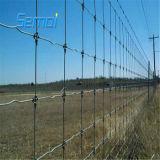 rete fissa ad alta resistenza galvanizzata tuffata calda del campo di 1.2m per i bestiami