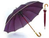 12 Paraplu van de Rand van de Glasvezel van ribben de Automatische Wind (ys-SM25123515R)