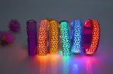 USB 재충전용 번쩍이는 개 유행 LED 애완 동물 고리