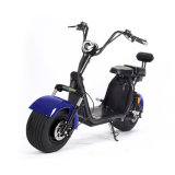 18.5 인치 20ah 60V 두 배 건전지를 가진 뚱뚱한 타이어 도시 코코야자 Harley 전기 스쿠터