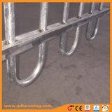 Recinzione tubolare superiore del metallo del ciclo