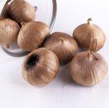 Intero aglio nero con morbido e rimbalzante