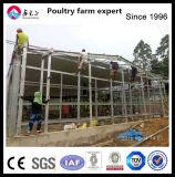 높은 자격이 된 조립식 강철 구조물 가금은 판매를 위해 유숙한다