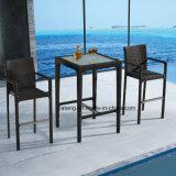 Design popular piscina jardim móveis de vime resistente a UV Bar fixado pelo presidente &Tabela (YT391)