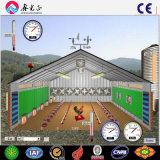 Certificado ISO de la capa de pollo de granja avícola