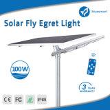100W Fatcory 가격 중국 제조자 공급 태양 정원 빛