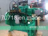 дизель/двигатель внутреннего сгорания 45kw 4-Stroke B3.9g-G45 Cummins естественный