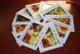 4-6мм закаленного стекла системной платы для измельчения/плата/овощные пластины/Flutto (JINBO)