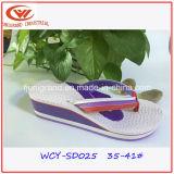 Ботинки сандалий способа Flops Flip повелительниц хорошего качества для напольного