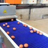 Machine modulaire en plastique matérielle de convoyeur à bande de dessus plat de la catégorie comestible pp