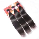Cabelo reto de seda da extensão brasileira luxuosa do cabelo humano