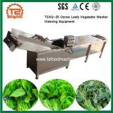 Tsxq-25 de l'ozone de la rondelle de légumes feuillus des équipements de nettoyage
