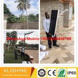 30With40With50With60W integrierter/einteiliger im Freien LED Straßen-Garten-Solarlicht der Licht-