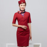 Frauen V-Stutzen Kurzschluss-Hülsen-schöne Flugliniekonstantes elegantes Stewardess-Kleid