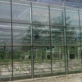 Alta serra di vetro agricola moderna di Multispan
