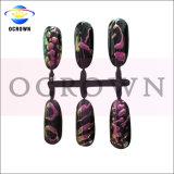 Ocrownの方法3Dキャッツ・アイの磁気カメレオンは釘の美のための粉に彩色する