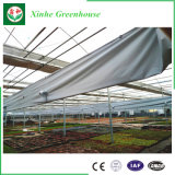 Invernadero comercial de cristal de la agricultura industrial moderna del bajo costo para la venta
