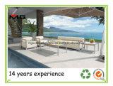 Moderno Mobiliario de jardín piscina sofá con bastidor de acero inoxidable