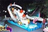 子供のための7mの長く小さく巨大で膨脹可能なスライド