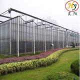 Intelligentes Glasgewächshaus für im Garten arbeitenerscheinen