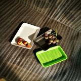 Farbiges Wegwerfplastiktellersegment des nahrungsmittelgrad-pp. für Frucht und Fleisch