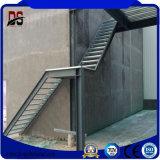 Сегменте панельного домостроения высокой заводской Qualtity прямой стальной конструкции металлические здания