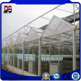 농업 상업적인 커버 유리 꽃 온실