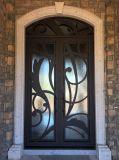 خارجيّة لطيفة معاصرة [ورووغت يرون] أبواب تصميم