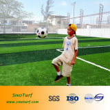 Gioco del calcio professionale dell'erba artificiale, calcio, rugby con il prezzo competitivo