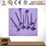 Оцинкованный зонтик головки кровельные гвозди из Китая Manufactory