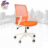 Büro-Möbel-niedrig Rückseiten-beweglicher Schwenker-Stuhl