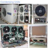 Geprägte Aluminiumende-Polyurethan-Kühlraum-Kaltlagerung für Nahrung