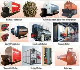 Dzl 0.7MW aan 29MW Boiler van het Hete Water van de Centrale verwarming de Met kolen gestookte