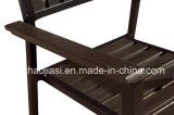 /Rattan extérieur/présidence et Tableau de meubles de Polywood meubles de jardin/patio/hôtel a placé (HS 3001C&HS 7115DT)