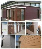 Haut de gamme de matériel de décoration intérieure et extérieure/WPC Revêtement mural Tile