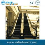 Piscina escada rolante do passageiro