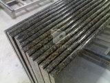 Твердый гранит и мрамор/Разработано/искусственного кварца камень для Benchtop и рабочую поверхность