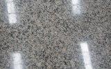 高品質のニューカレドニアの花こう岩