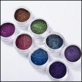 Chameleon copos espejo Chrome Powder glitter Holo pigmento Nail Art