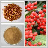 Chineses BushcherryのシードExtract/25% Phytosterols