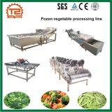 Línea de procesamiento de vegetales congelados incluyendo escaldado de lavado y secado de la máquina