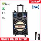Feiyang/Temeisheng altoparlante ricaricabile omnidirezionale di Bluetooth di 12 pollici con il LED Qx-1212 chiaro