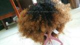아프로 꼬부라진 Synthentic 머리 가발 Ombre 색깔 공장 가격