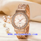 Kundenspezifische Marken-Uhr ODM-Edelstahl-Armbanduhr (WY-G17007C)
