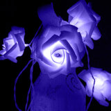 Indicatori luminosi della stringa della Rosa dell'indicatore luminoso della batteria del LED Rosa