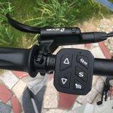 Bici eléctrica barata 5000W para la bici de montaña eléctrica de la venta
