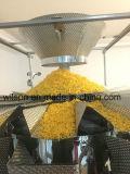 Máquina de empacotamento automática torrada do alimento de seda do Crisp/queijo de India